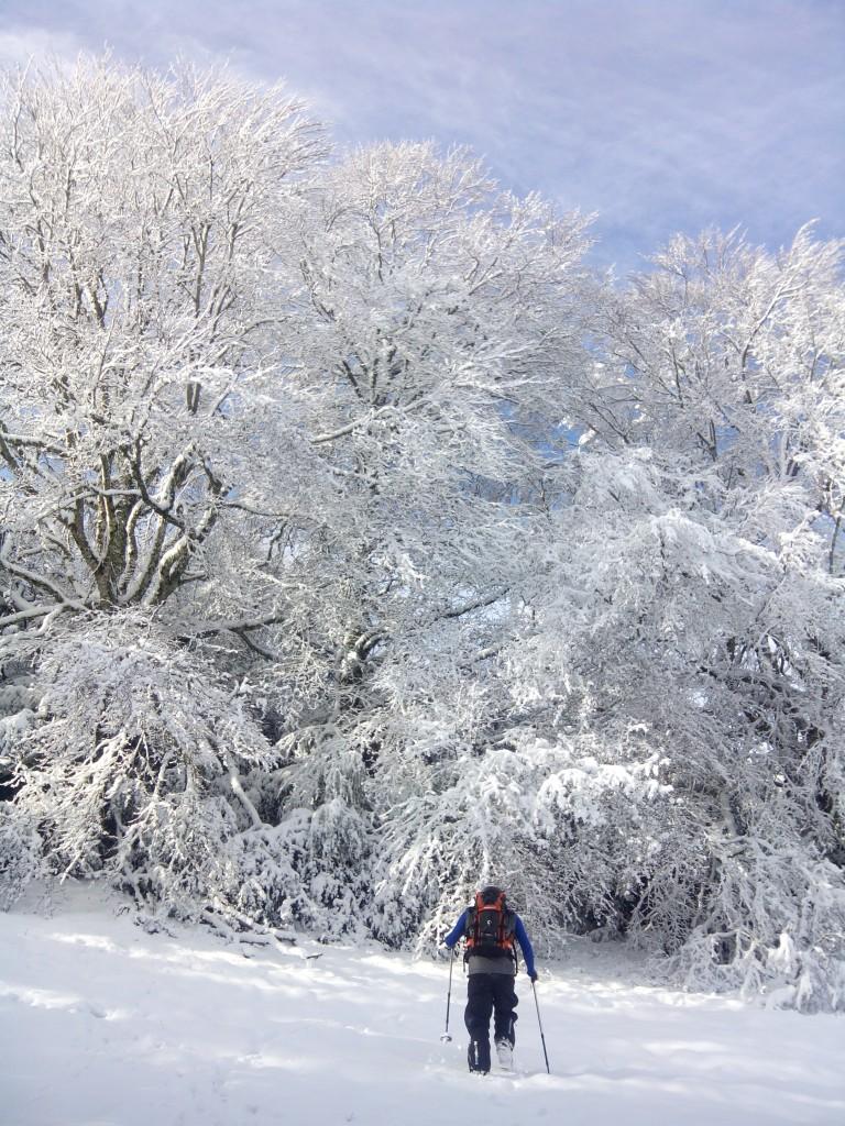 Ascensión invernalal Cuculo